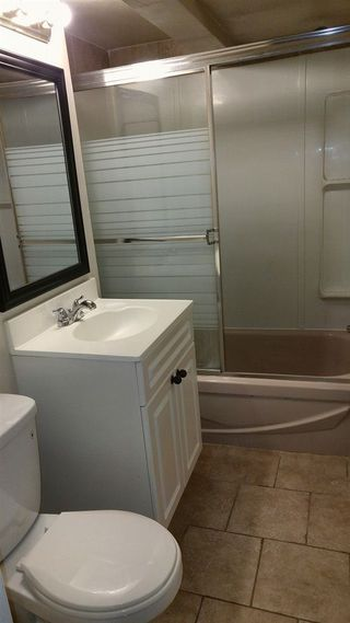 Photo 21: 11420 71 Street in Edmonton: Zone 09 House for sale : MLS®# E4151705