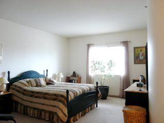 Photo 15: 301 8728 GATEWAY Boulevard in Edmonton: Zone 15 Condo for sale : MLS®# E4155190