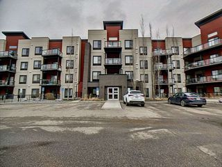 Main Photo: 211 304 Ambleside Link in Edmonton: Zone 56 Condo for sale : MLS®# E4156921