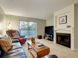Photo 5: 205 1436 Harrison St in VICTORIA: Vi Downtown Condo for sale (Victoria)  : MLS®# 820345