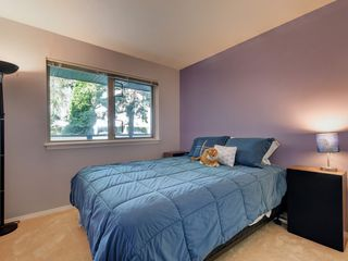 Photo 17: 205 1436 Harrison St in VICTORIA: Vi Downtown Condo for sale (Victoria)  : MLS®# 820345