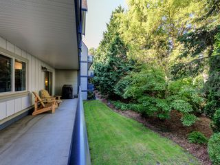 Photo 22: 205 1436 Harrison St in VICTORIA: Vi Downtown Condo for sale (Victoria)  : MLS®# 820345