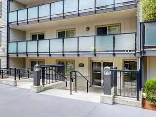 Photo 24: 205 1436 Harrison St in VICTORIA: Vi Downtown Condo for sale (Victoria)  : MLS®# 820345