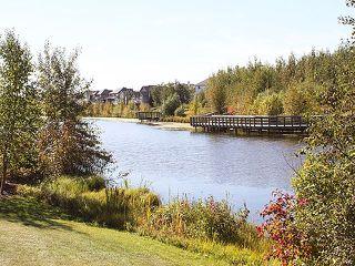 Photo 45: 1169 GOODWIN Circle in Edmonton: Zone 58 House for sale : MLS®# E4188927