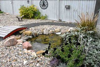 Photo 43: 1169 GOODWIN Circle in Edmonton: Zone 58 House for sale : MLS®# E4188927