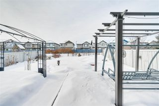 Photo 39: 1169 GOODWIN Circle in Edmonton: Zone 58 House for sale : MLS®# E4188927