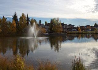 Photo 46: 1169 GOODWIN Circle in Edmonton: Zone 58 House for sale : MLS®# E4188927