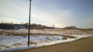 Photo 7: 71 25527 TWP RD 511A Road: Rural Parkland County Rural Land/Vacant Lot for sale : MLS®# E4191638