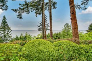 "Photo 6: 12590 15A Avenue in Surrey: Crescent Bch Ocean Pk. House for sale in ""Waterfront Ocean Park"" (South Surrey White Rock)  : MLS®# R2453504"