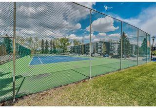 Photo 3: 118 816 89 Avenue SW in Calgary: Haysboro Apartment for sale : MLS®# A1059507