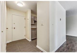 Photo 4: 118 816 89 Avenue SW in Calgary: Haysboro Apartment for sale : MLS®# A1059507