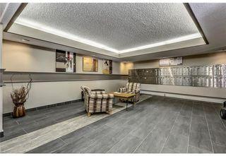 Photo 19: 118 816 89 Avenue SW in Calgary: Haysboro Apartment for sale : MLS®# A1059507