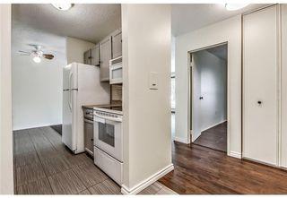 Photo 6: 118 816 89 Avenue SW in Calgary: Haysboro Apartment for sale : MLS®# A1059507