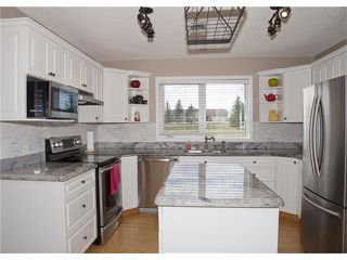 Photo 5: 338164 38 Street W: Rural Foothills M.D. House for sale : MLS®# C4035375