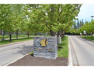 Photo 26: 12 MCKERNAN Court SE in Calgary: McKenzie Lake House for sale : MLS®# C4039610