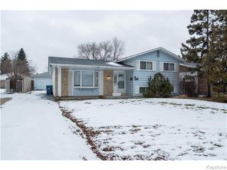 Main Photo: 11 Edelweiss Crescent in WINNIPEG: North Kildonan Residential for sale (North East Winnipeg)  : MLS®# 1531625
