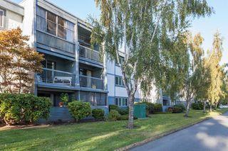"Photo 12: 218 3411 SPRINGFIELD Drive in Richmond: Steveston North Condo for sale in ""BAYSIDE COURT"" : MLS®# R2107576"