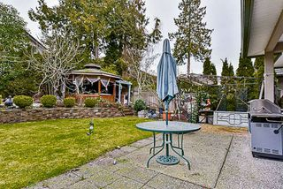 Photo 19: 7287 147A Street in Surrey: East Newton House for sale : MLS®# R2134754