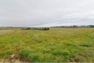 Photo 22: : Rural Mountain View County Agri-Business for sale : MLS®# C4135558