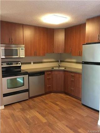 Photo 6: 4212 193 Victor Lewis Drive in Winnipeg: Linden Woods Condominium for sale (1M)  : MLS®# 1727207