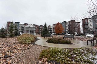 Main Photo: 315 396 SILVER_BERRY Road in Edmonton: Zone 30 Condo for sale : MLS®# E4132703