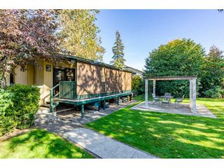 """Photo 19: 32232 PINEVIEW Avenue in Abbotsford: Abbotsford West House for sale in """"Clearbrook"""" : MLS®# R2318220"""