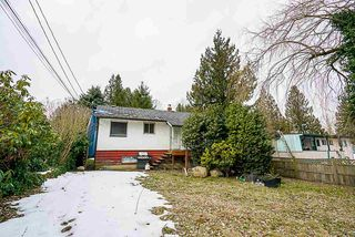 Photo 6: 11132 131A Street in Surrey: Whalley House for sale (North Surrey)  : MLS®# R2345245