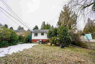 Photo 7: 11132 131A Street in Surrey: Whalley House for sale (North Surrey)  : MLS®# R2345245