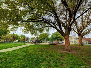 Photo 17: 311 2560 Wark St in VICTORIA: Vi Hillside Condo Apartment for sale (Victoria)  : MLS®# 811579