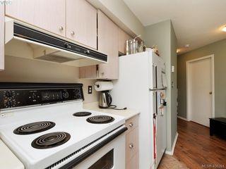 Photo 7: 311 2560 Wark St in VICTORIA: Vi Hillside Condo Apartment for sale (Victoria)  : MLS®# 811579