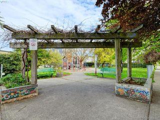 Photo 16: 311 2560 Wark St in VICTORIA: Vi Hillside Condo Apartment for sale (Victoria)  : MLS®# 811579
