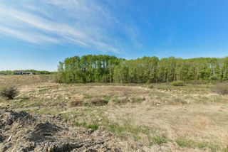 Photo 11: 16 1118 TWP RD 534 Road: Rural Parkland County Rural Land/Vacant Lot for sale : MLS®# E4155395