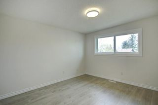 Photo 14: 3605 29A Avenue SE in Calgary: Dover Semi Detached for sale : MLS®# C4244761