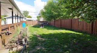 Photo 23: 8303 159 Street in Edmonton: Zone 22 House for sale : MLS®# E4161078
