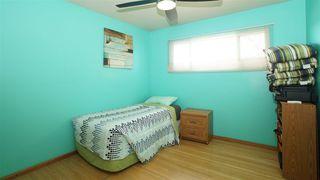 Photo 14: 8303 159 Street in Edmonton: Zone 22 House for sale : MLS®# E4161078