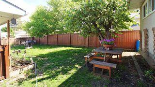 Photo 22: 8303 159 Street in Edmonton: Zone 22 House for sale : MLS®# E4161078