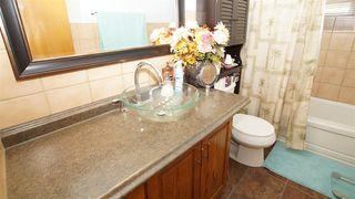 Photo 11: 8303 159 Street in Edmonton: Zone 22 House for sale : MLS®# E4161078