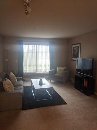 Photo 5: 108, 240 Spruce Ridge Road in Spruce Grove: Condo for rent