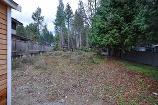 Photo 5: 3242 BEACH Avenue: Roberts Creek House for sale (Sunshine Coast)  : MLS®# R2425988