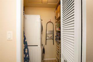 Photo 18: 988 Annie St in : SE Quadra Half Duplex for sale (Saanich East)  : MLS®# 855951