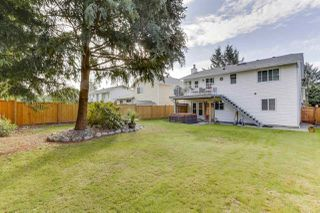 Photo 33: 20347 WALNUT Crescent in Maple Ridge: Southwest Maple Ridge House for sale : MLS®# R2506378