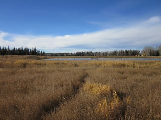Photo 5: NE 13-54 Range Road 130: Niton Junction Rural Land for sale (Edson)  : MLS®# 32591