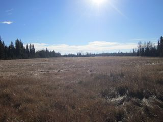 Photo 1: NE 13-54 Range Road 130: Niton Junction Rural Land for sale (Edson)  : MLS®# 32591