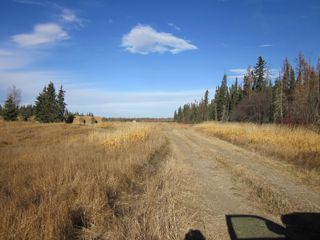 Photo 6: NE 13-54 Range Road 130: Niton Junction Rural Land for sale (Edson)  : MLS®# 32591