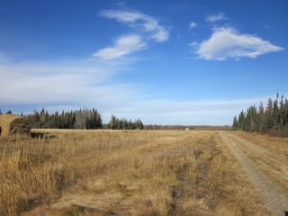Photo 2: NE 13-54 Range Road 130: Niton Junction Rural Land for sale (Edson)  : MLS®# 32591