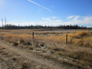Photo 9: NE 13-54 Range Road 130: Niton Junction Rural Land for sale (Edson)  : MLS®# 32591