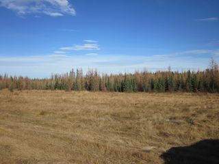 Photo 14: NE 13-54 Range Road 130: Niton Junction Rural Land for sale (Edson)  : MLS®# 32591