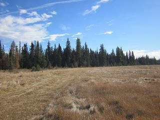 Photo 13: NE 13-54 Range Road 130: Niton Junction Rural Land for sale (Edson)  : MLS®# 32591