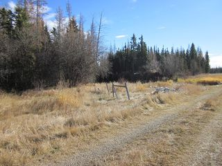 Photo 8: NE 13-54 Range Road 130: Niton Junction Rural Land for sale (Edson)  : MLS®# 32591
