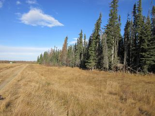Photo 11: NE 13-54 Range Road 130: Niton Junction Rural Land for sale (Edson)  : MLS®# 32591